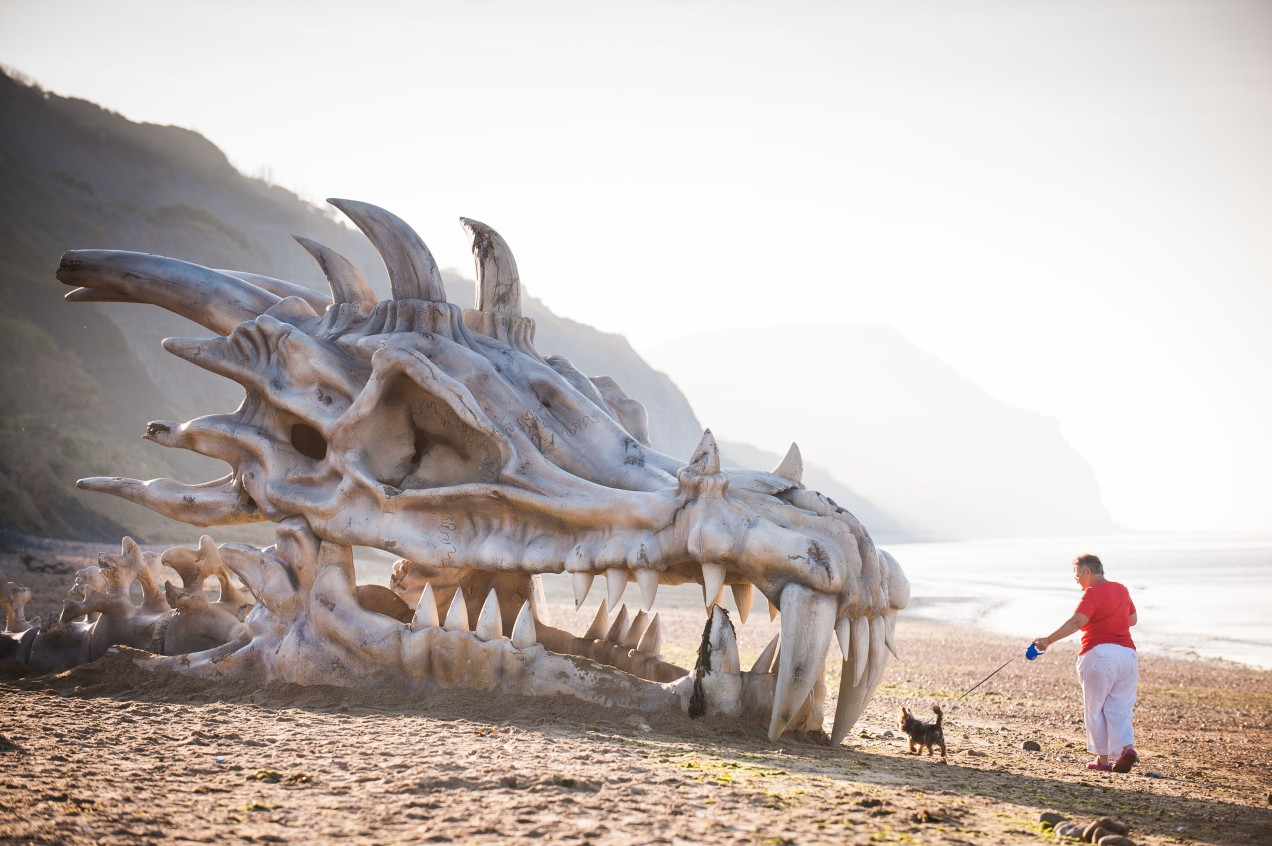Dragon skull on Dorset beach