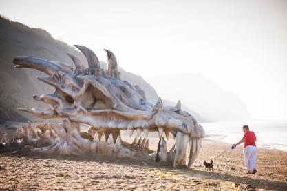 Dragon skull on Dorset beach