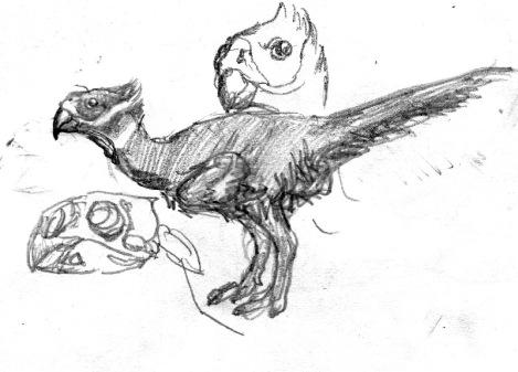 Tropical Oviraptor
