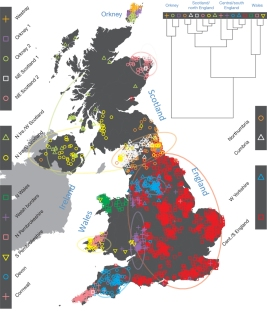 Clustering of the 2,039 UK individuals into 17 clusters based only on genetic data.