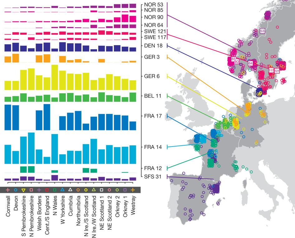 European ancestry profiles for the 17 UK clusters.