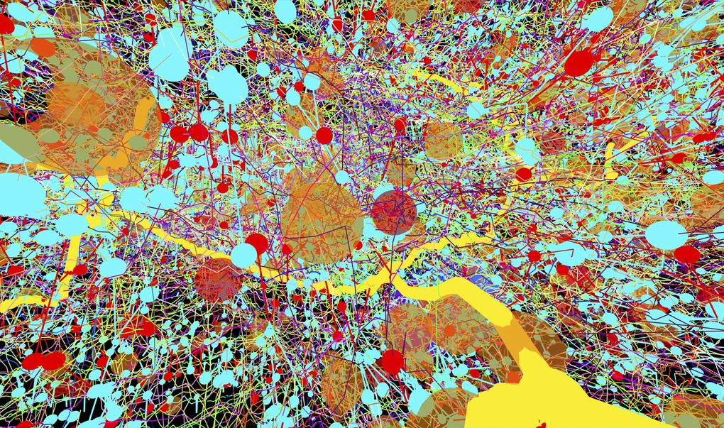 Transmission electron micrographs were used to create this color-coded representation of a fruit-fly's nervous system
