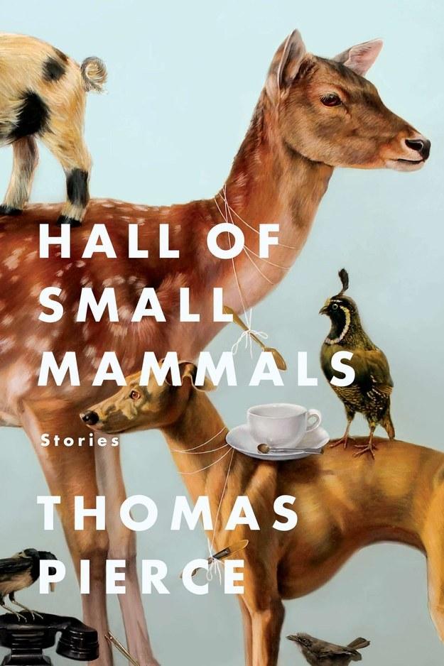 Hall of Small Mammals