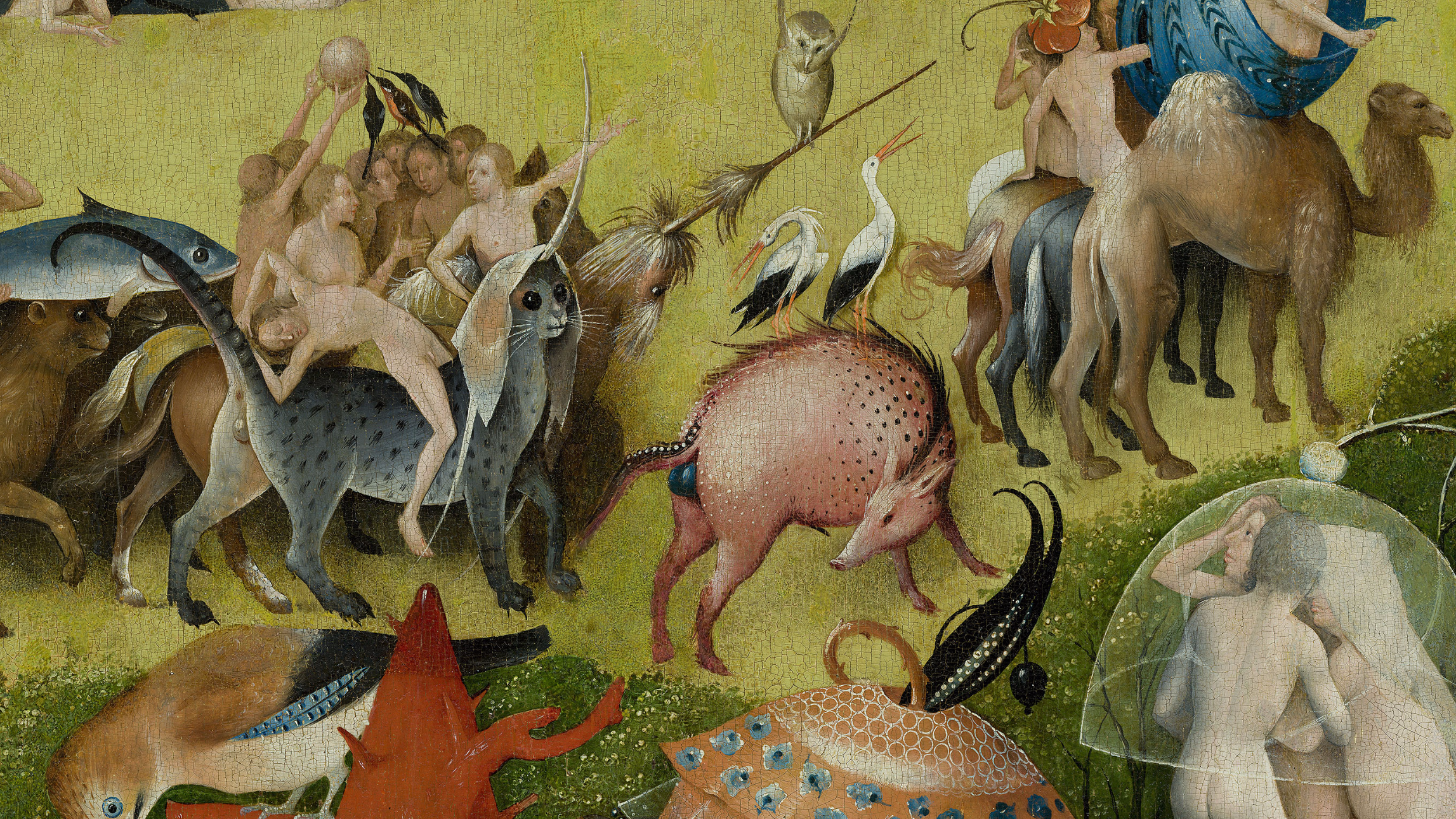 Explore the garden of earthly delights in high resolution sockrotation for The garden of earthly delights