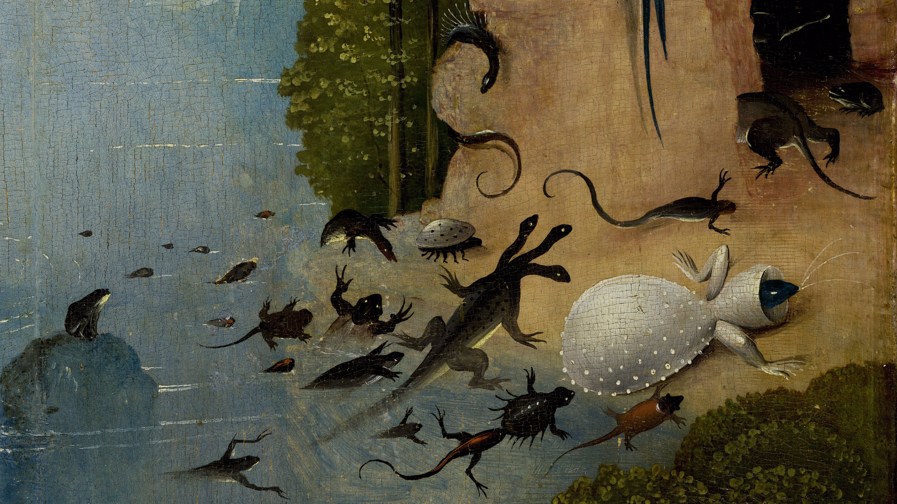 Explore The Garden Of Earthly Delights In High